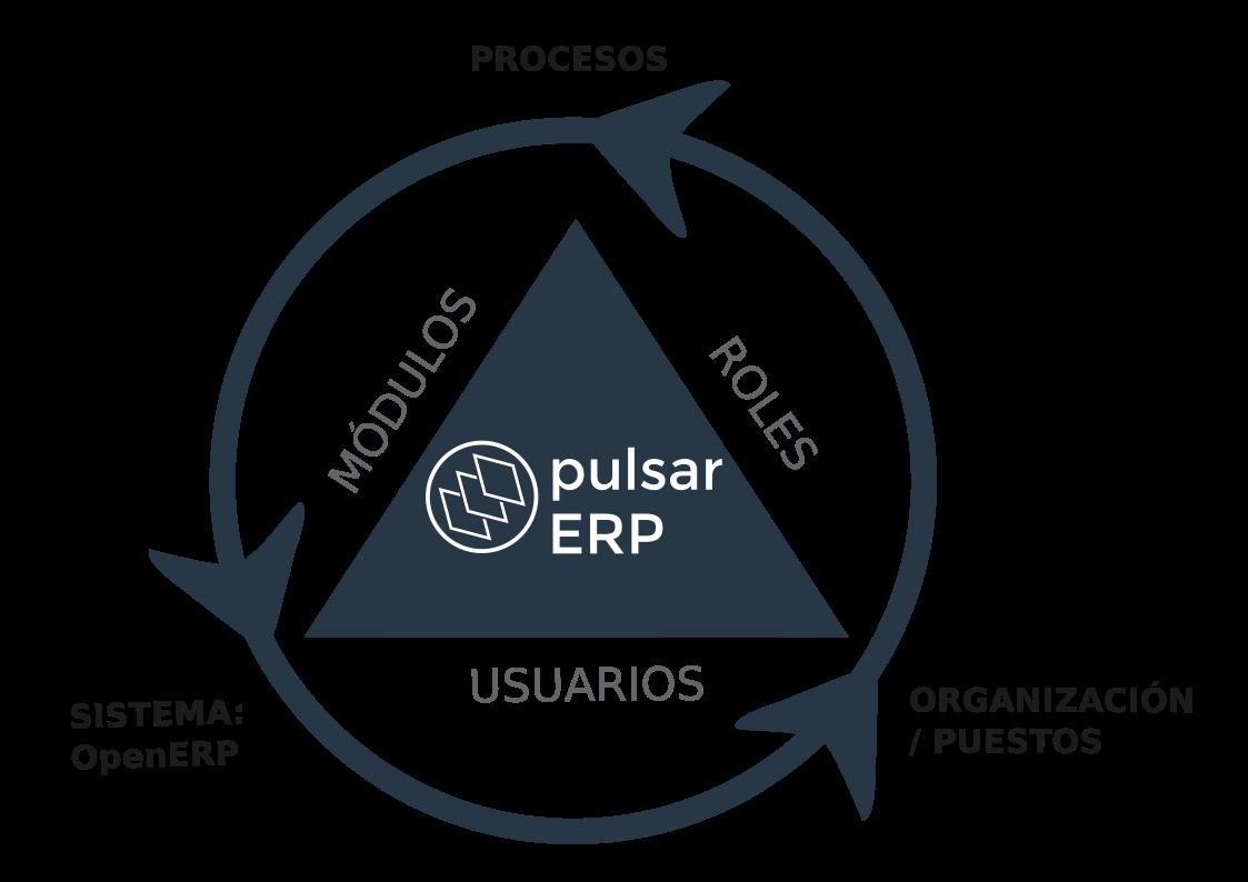 composición de pulsar erp módulos roles usuarios